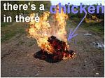 Click image for larger version  Name:flammed.JPG Views:1062 Size:70.0 KB ID:72322